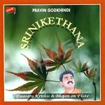 Srinikethana