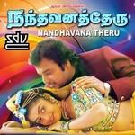 Nandavana Theru