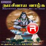 namasivaya vaazhga
