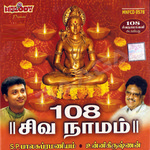 108 Siva Naamam
