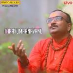 Thaayumaanavane