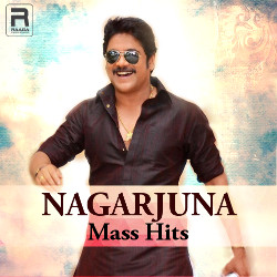 Nagarjuna Mass Hits - Vol 1 songs