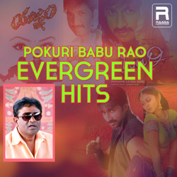 Pokuri Babu Rao Evergreen Hits songs