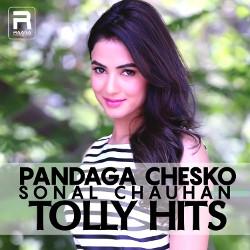 Pandaga Chesko - Sonal Chauhan Tolly Hits songs