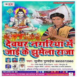 Devghar Nagariya Me Jaai Ke Jhumela Raja songs