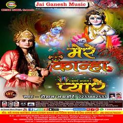 Mere Kanha Pyare songs