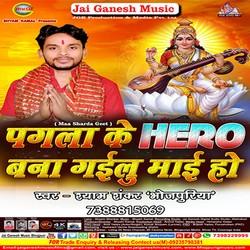 Pagla Ke Hero Bana Gailu Mai Ho songs