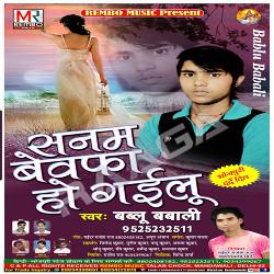 Sanam Bewafa Ho Gayilu songs