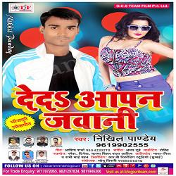 Deda Apan Jawani songs