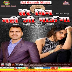 Tere Bin Nahi Ji Paunga songs