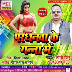 Pardhanwa Ke Ganna Me songs