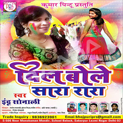 Dil Bole Sara Rara songs