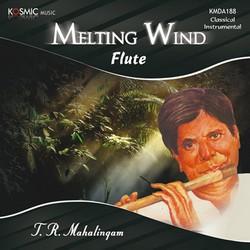 Melting Wind - Flute songs