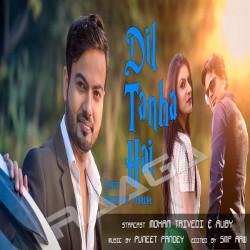 Dil Tanha Hai songs