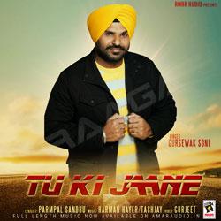 Tu Ki Jaane songs
