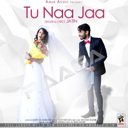 Tu Naa Jaa songs
