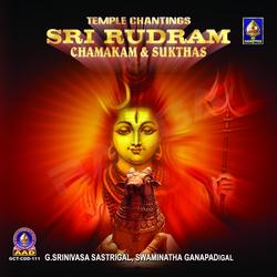 Sri Rudram Chamakam And Sukthas songs