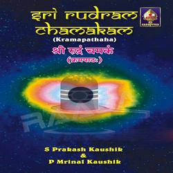 Sri Rudram Chamakam - Kramapatha songs