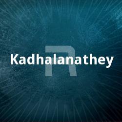Kadhalanathey songs
