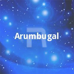 Arumbugal songs