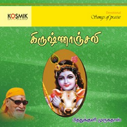 Krishnanjali songs
