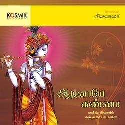 Aadinaye Kanna (Instrumental) songs