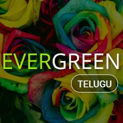 Telugu Evergreen Radio