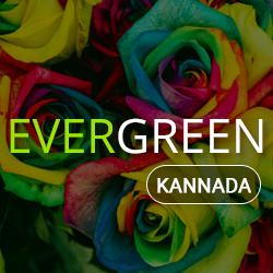 Telugu Evergreen Radio