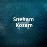 Sneham Kosam songs