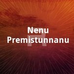 Nenu Premistunnanu songs