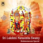 Sri Lakshmi Narasimha Swamy Brahmotsavam Special