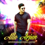 Allu Arjun - Introduction Hits songs