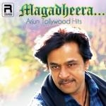 Magadheera - Arjun Tollywood Hits songs