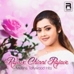 Rojave Chinni Rojave - Meena Tollywood Hits songs