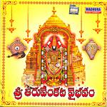 Sri Thiru Venkata Vaibavam songs