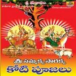 Sri Samakka Sarakka Divya Darshanam songs