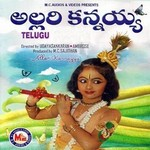 Allarikannayya songs
