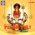 Pedda Puli songs