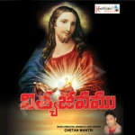 Nithya Jeevamu songs