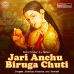Jari Anchu Biruga Chuti songs