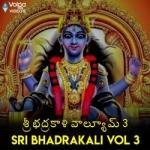 Sri Bhadrakali - Vol 3 songs