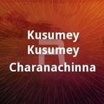 Kusumey Kusumey Charanachinna songs
