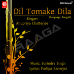 Dil Tumake Dila songs