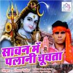 Saavn Mein Palani Chuvata songs
