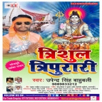 Trishul Tripurari songs