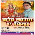 Kareb Navrat A Piya songs