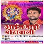 Aaiyl Badi Sherwali songs