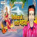 Nimiya Ke Dhadhi Maiya songs
