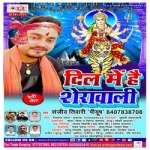 Dil Me Hai Sherawali songs