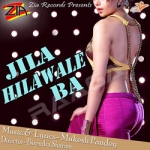 Jila Hilawale Ba songs